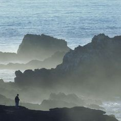 10 Things to Do in Monterey and Carmel: Point Lobos State Reserve