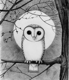 'Barn Owl Moon' by Caroline Stubbs