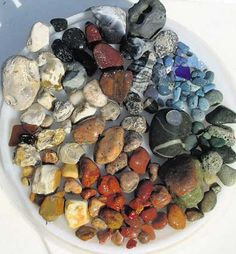 Lake Michigan 1 hour Rock Collection: Wondering how many rocks we can bring back from vacation this year.