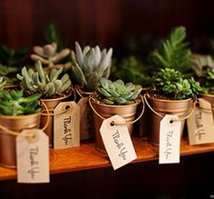Baby Shower Favors for a rustic style shower