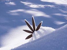 VALAVIER Aktivresort - Angebote Airplane View, Winter, Winter Time, Winter Fashion