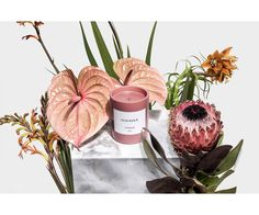 Nubby Twiglet   Overose Candles