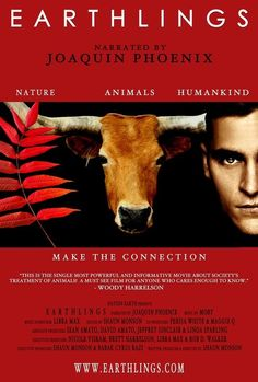 10 vegan documentaries that will blow your mind. These movies and documentaries are extremely educational and need to be watched by those transitioning to a vegan diet. Joaquin Phoenix, Movies To Watch, Good Movies, Tv Watch, Vegan Documentaries, Soundtrack, Especie Animal, I Love Cinema, Stop Animal Cruelty