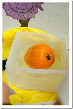 pumpkin activities and experiments