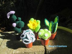Dony's Creations by Donatella Saralli : Piante Grasse in uncinetto cactus crochet. Site is not in english