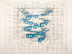 The Golden Ratio. Blue Morpho, Double Helix