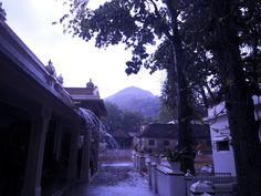#tiruvannamalai #rains #ramanaashram #chennai #holyplace  #ashram #bhagwanramanamaharishi                          Rains in Tiruvannamalai are a rarity but when they do come even if for only a while, they add to the already existing bliss of this holy place and the Bhagwan Shri Ramana Ashramam.