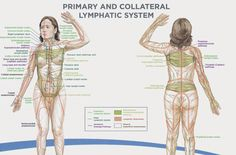 Simple Exercise To Naturally Drain Your Lymph System, Boost Immune Function & Remove Toxins