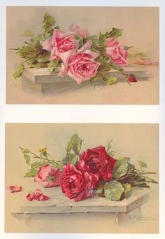 3 Rose PRINT s C. Klein 5 x7 Cabbage Rose by VictorianRosePrints, $11.95