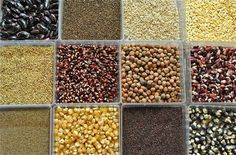 Nutrient-dense seeds are finally starting to get the attention that they deserve. Packed with healthy fats, protein, fiber and lots of minerals and vitamins