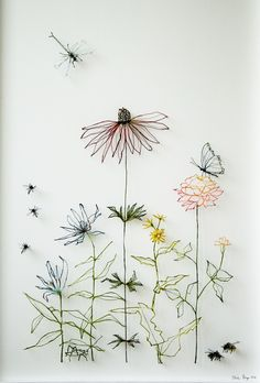 still life - flowers and insects.