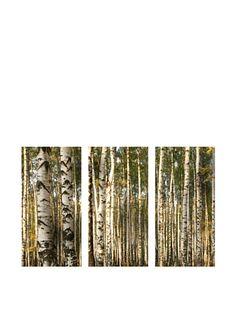 66% OFF Art Addiction Birch Trees, Triptych Art Addiction, Birches, Birch Trees, Triptych, Photography, Painting, Inspiration, Ideas, Biblical Inspiration