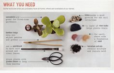 Terrarium instructions, good instructions on how to build and what you will need to start a terrarium.