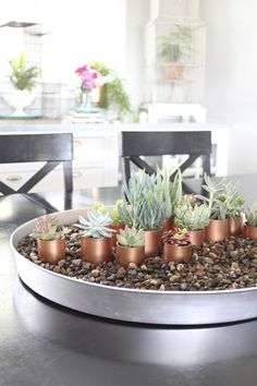 Succulent and Copper Centerpiece - this combo looks gorgeous as a wedding centerpiece