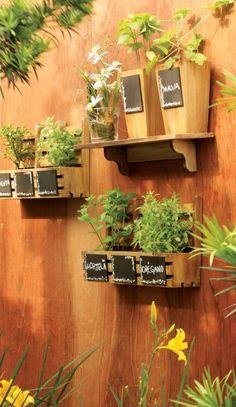 Hortas urbanas: uma alternativa prática e sustentável   Como conservar ervas compradas em maço