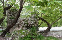Acheron Springs - The Old Bridge (Paliogefyro) Old Things, World, Plants, Bridge, The World, Plant, Planting, Planets, Bro