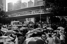 UMBRELLA REVOLUTION-7306