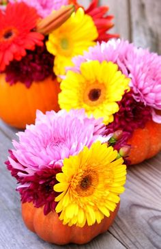 Make these DIY pumpkin flower arrangements to add a pretty touch to your Thanksgiving table or your fall décor! Get the tutorial at The Sweetest Occasion. Pumpkin Arrangements, Fall Flower Arrangements, Pumpkin Centerpieces, Flower Centerpieces, Pumpkin Flower, Diy Pumpkin, Halloween Entertaining, Autumn Activities For Kids, Diy Halloween Decorations