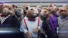 KIA has brought on the hamsters again to promote its latest 2015 Soul EV. This time the furry rodents are geeks, oh and there are 'sexy' hamsters in the video. The video is set to Maroon 5′s new song 'Animals.' The commercial will air during MTV's Video Music Awards. Sally Turner has the video.  KIA HAMSTERS TO DEBUT NEW COMMERCIAL AT VMAS  http://itsogs.com/2014/08/kia-hamsters-to-debut-new-commercial-at-vmas/