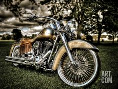 Harley. A Photographic Print by Stephen Arens at Art.co.uk
