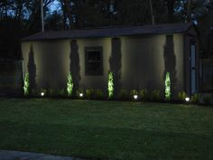 these are italian cypress but I love the way they are spot lit would look great with sky pencils too