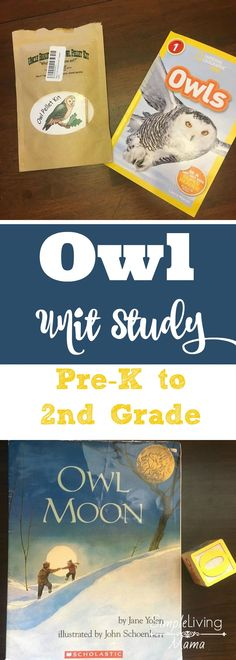 Fun supplement for zoology This owl unit study will take your little one on an amazing adventure discovering owls! Read great book, listen to the different owl calls, identify the types of owls, and even dissect an owl pellet! Owl Activities, Winter Activities, Preschool Ideas, Owl Pellets, Owl Moon, Halloween Kleidung, Five In A Row, Animal Science, Thematic Units