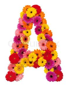 Google Image Result for http://www.colourbox.com/preview/2963414-264256-letter-a-flower-alphabet-isolated-on-white-background.jpg