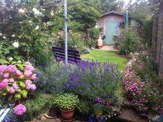 English Garden designed by Adrienne Chinn.  Photo: Adrienne Chinn
