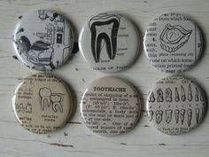 Dentistry magnets