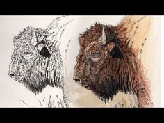 (18) Painting - Adding Watercolor To Your Ink Drawings - YouTube