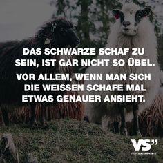 Visual Statements®️️ Das schwarze Schaf zu sein, ist gar nicht so übel. Vor allem, wenn man sich die weißen Schafe mal etwas genauer ansieht. Sprüche / Zitate / Quotes /Leben / Freundschaft / Beziehung / Familie / tiefgründig / lustig / schön / nachdenken