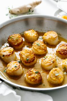 **saving for the sauce** Scallops that are easy, fresh, pan seared and perfectly golden! Top them with a sweet and tangy citrus ginger sauce for a restaurant-quality meal that's sure to be a crowd pleaser. Fish Recipes, Seafood Recipes, Dinner Recipes, Cooking Recipes, Appetiser Recipes, Scd Recipes, Seafood Appetizers, Healthy Recipes, Paleo Dinner