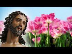 ROSARIO A LA PRECIOSA SANGRE DE CRISTO (Padre Salvador Herrera) - YouTube