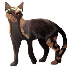 807 best warriors cats images on pinterest warrior cats warrior