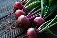 Gardening 101: My Top 12 Easy Vegetables To Grow From Seed