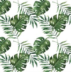 Palm Leaf Wallpaper - Removable Wallpapers - Floral Tropical Wallpaper - Self Adhesive Jungle Wall Decal - Temporary Peel and Stick Wall Art
