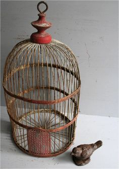 Vintage Bird Cages | Second Shout Out    http://www.secondshoutout.com/blog/vintage-bird-cages