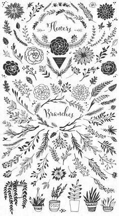 Handsketched Rustic elements by kite-kit on Creative MarketYou can find Design elements and more on our website.Handsketched Rustic elements by kite-kit on Creative Market Doodle Art, Drawing Hands, Hand Sketch, Bullet Journal Inspiration, Journal Ideas, Tattoo Fonts, Art Journals, Design Elements, Hand Lettering