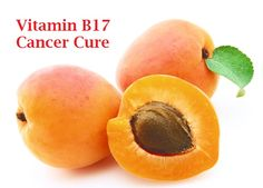 Vitamin B17 a cancer cure  A powerful prevention and personal ally against cancer!  This cure is kept under the carpet from the cancer pharmaceuticals industry which is estimated at 200 billion dollars a year.  Read my blog and watch the video for more...