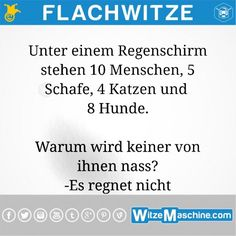 Flachwitze - Warum keiner nass wir The opposite time, I purchased a digital mail Funny Puns, Funny Quotes, Best Memes Ever, Self Conscious, Life Is Strange, What Can I Do, Getting Bored, Laugh Out Loud, Cool Words