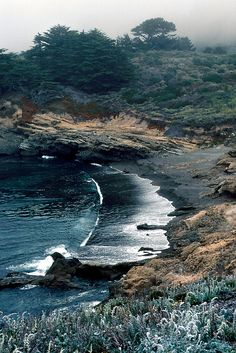 A nice walk for holding hands and feeling the black silky sand beneath your feet.