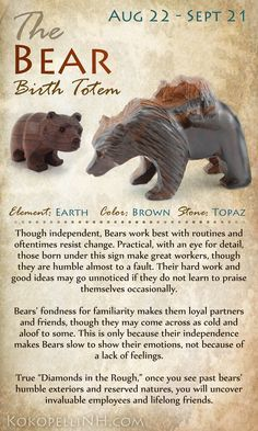 Are you the Practical Bear? Virgo Those born between Aug 22 and Sept 21 are represented by the Bear Birth Totem. Native American Totem, American Indians, Native American Zodiac Signs, Native American Spirituality, Native American Symbols, Le Totem, Animal Spirit Guides, Bear Spirit Animal, Arte Tribal