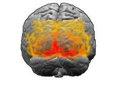 Con los actuales estudios tomográficos de metabolismo cerebral PET y SPECT se ha demostrado que la mayor actividad cerebral correspondiente al movimiento ocular ocurre en un área localizada lateral y superior a la unión parietooccipital ( áreas 19 y 37 de Brodman)