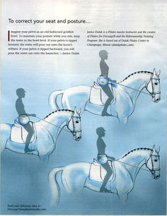 Equestrian Materials: The Horse Grooming Kit - Basic Guide About Horse Horseback Riding Tips, Horse Riding Tips, Horse Tips, Horse Exercises, Riding Lessons, Dressage Horses, Equestrian Outfits, Horse Training, Horse Care