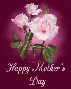 Happy Mother's Day pink roses mom happy mother's day mother's day thank mom penny parker Mothers Day Book, Happy Mothers Day Pictures, Happy Mothers Day Mom, Happy Mother Day Quotes, Mother Day Wishes, Mothers Day Flowers, Mom Day, Mothers Day Cards, Mothers Love