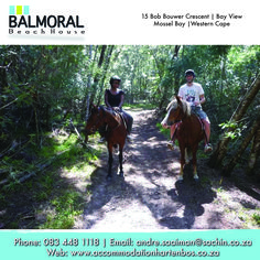 Mountainview Horse trails is situated at the foot of the Outeniqua Mountains in a Paradise called Wilderness. They offer horse trails to suit your level of experience and budget! The emphasis is on having fun, while experiencing nature in a unique and unforgettable way.  #Wilderness #GardenRoute #Activities Horse Trails, I Bay, Wilderness, Beach House, Have Fun, Paradise, Africa, Budget, Suit