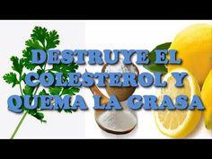 Amada Inés: DESTRUYE EL COLESTEROL Y QUEMA LA GRASA. ESTA BEBI...