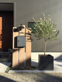 Garden Design, House Design, Natural Garden, House Entrance, Front Yard Landscaping, Signage, Door Handles, Exterior, Patio
