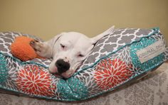 Check out Modern Dog Bed Cover, Grey Lattice Pet Bed Cover, Large Dog Bed, Medium Dog Bed, Small Dog Bed, Dog Bed Pillow, Pet Bed Duvet, Washable on originaldigsllc