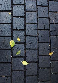 Noir & Black  Cahier de styles - Compilation thématiques d'images et d'idées. Couleur : Noir - Black Color ©️️ Atelier de Paysage - JesuisauJardin.fr - Paris -